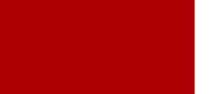 NDIA Tampa Bay Chapter logo